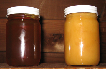 Jars of crystallized honey and runny honey - same type of honey