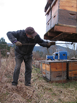 Bee Hives & Pallets are cleaned by Pat Ray
