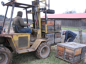 Bowen lifts 2 pallets of hives for cleaning by Pat Ray