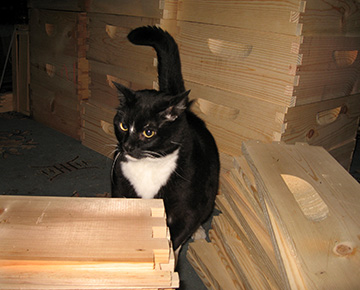 William Kitten checks out the bee box assembly line