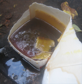 Honey, Water, Wax - all left from rendering beeswax