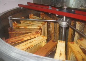Maxant 20 Frame Extractor loaded with frames of honey