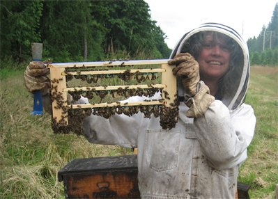 Beekeeper Karen E. Bean of Brookfield Farm Bees And Honey and Grafted Queen Cells