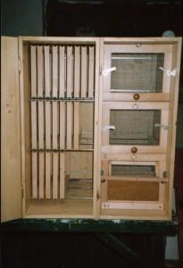 Carniolan Hive Interior