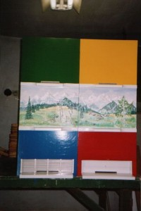 Painted Carniola Bee Hives