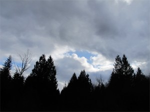 Storm Clouds and trees near Brookfield Farm, Maple Falls, WA