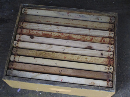 Frames in Bee box