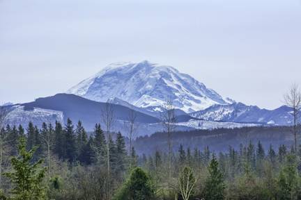 Photo of Mt. Rainier, Washignton, In Spring by Rbphoenix